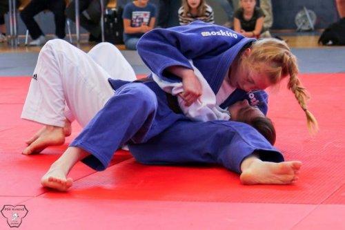 20140705_judo_vl_frauen_6027