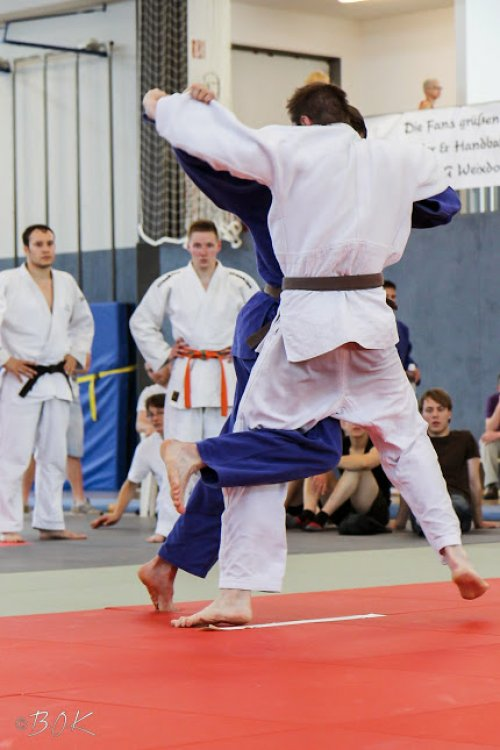 20140705_judo_vl_maenner_7231