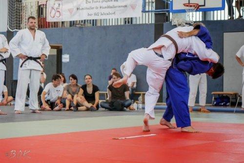 20140705_judo_vl_maenner_7410