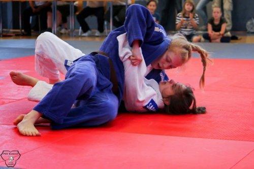 20140705_judo_vl_frauen_6024
