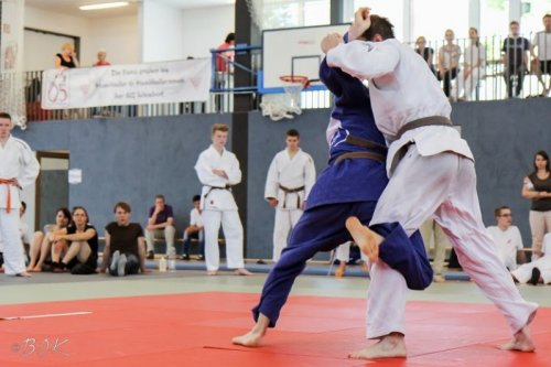 20140705_judo_vl_maenner_7235