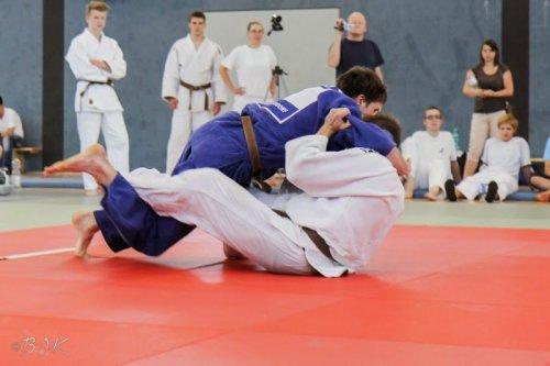 20140705_judo_vl_maenner_7238