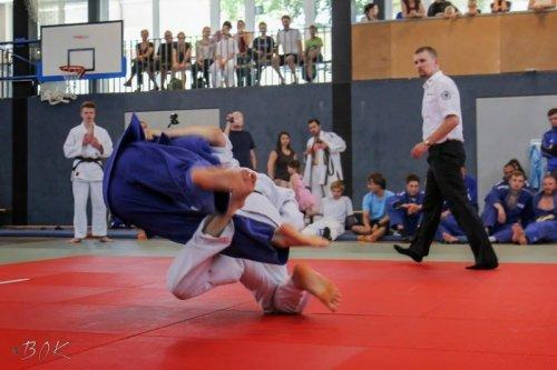 20140705_judo_vl_maenner_7308