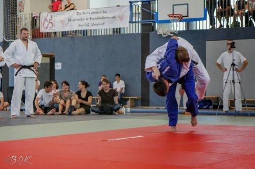 20140705_judo_vl_maenner_7412