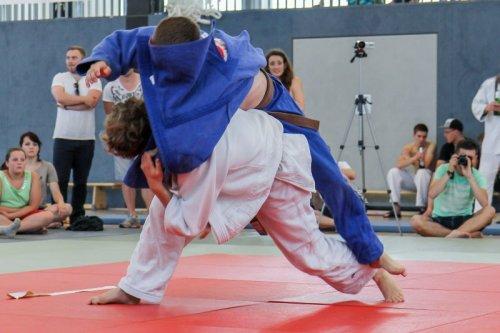 20140705_judo_vl_maenner_7787